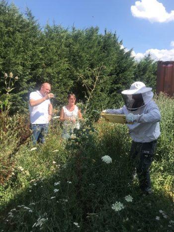 eriane-abeille